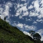 空と緑だけは過去と変わらない